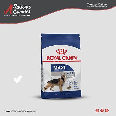 Royal Canin Maxi Adulto x 15Kg